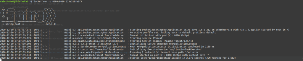 Output after running the application - Dockerize Spring Boot Application